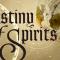 Destiny of Spirits – Service wird eingestellt